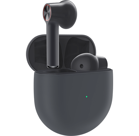 OnePlus Buds Black with Case